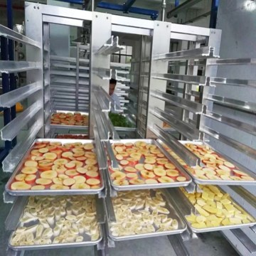 Top quality 200Kg capacity tomatoes freeze drying machine