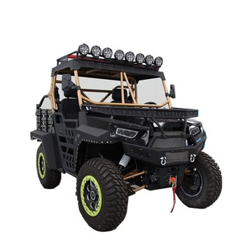 1000CC 4x4 UTV QUAD BIKE αμμόλοφο