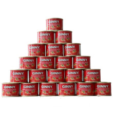 Double Concentration Canned Tomato Paste with GINNY Brand