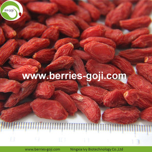 Factory Supply Super Food Dried Go Ji