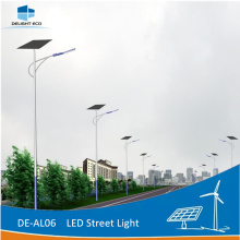 ODM for Solar Power Street Light DELIGHT 4M Pathway Solar Outdoor Street Lighting export to Japan Exporter