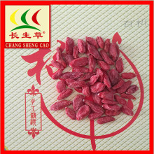 Dry fruits organic dried red goji berries