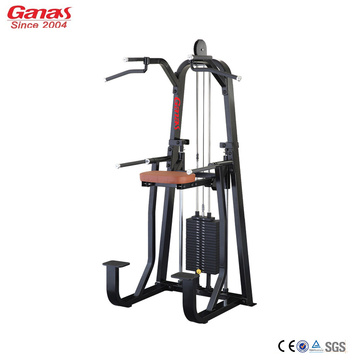 Professional Gym Fitness Machine Dip Chin Assit