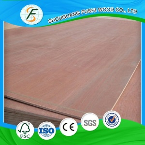 Bintangor Plywood Prices Lowest Hot Sale