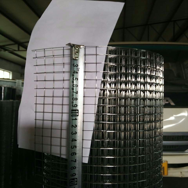 Galvanized & PVC Coated Welded Wire Mesh
