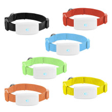 Pet Activity GPS Tracker for Dogs Collar