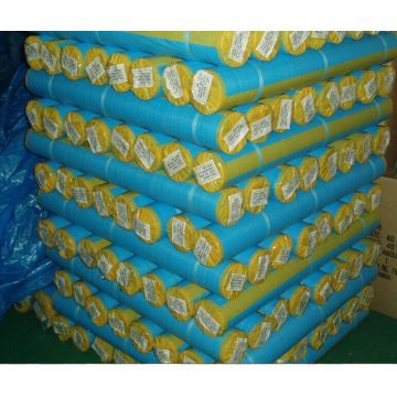 Hot selling PE tarpaulin in roll