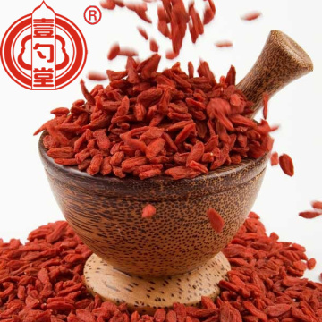 Food grade air dry goji berry raw material