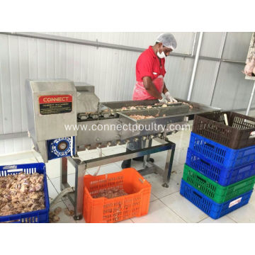 Gizzard Fat Removing Machine Gizzard