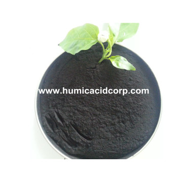 OEM/ODM Manufacturer for Drilling Fluid Mud Agent Nitro Humic Acid organic nitrogen soil fertilizer supply to Fiji Factory