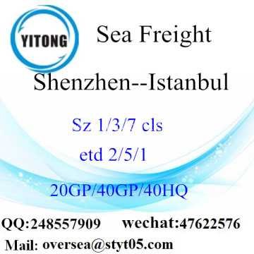 Shenzhen Port Sea Freight Shipping To Istanbul