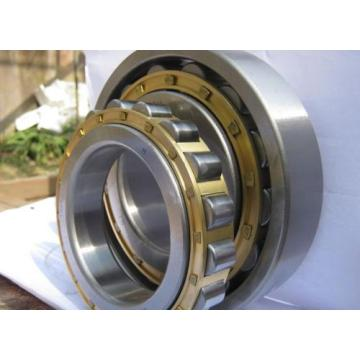 Double Row Cylindrical Roller Bearing (3182156K /NN3056K/W33)