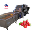 Strawberry Washing Machine Top Loading Washing Machine