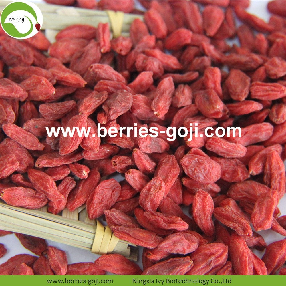 Organic Certificated Goji Berries