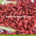 Hot Sale Nutrition Dried Organic Certificated Goji Berries