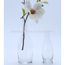 Clear Color Simple Glass Vase