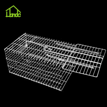 Humane Live Rat Catcher Trap