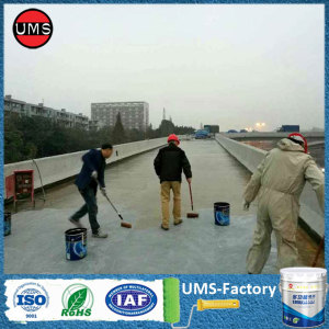 Polyurea waterproof elastomeric coating paint on concrete
