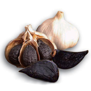 OEM Customized for Single Bulb Black Garlic Single Solo Black Garlic export to Swaziland Manufacturer