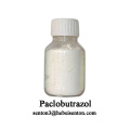Plant Growth Regulator Paclobutrazol