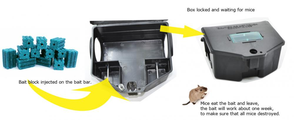 How Bait Box Kill Mice