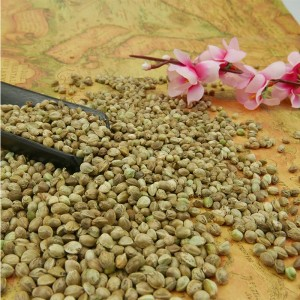 Natural Hulled Hemp Seeds Organically Grown