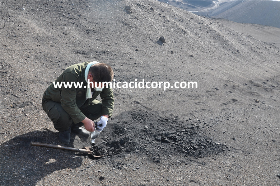 Humic Acid Leonardite Mine