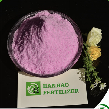 Water soluble NPK fertilizer 19-19-19 from factory.