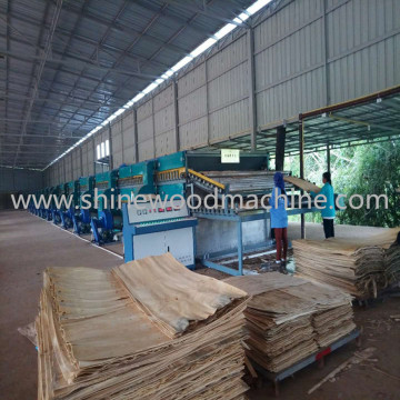 3 Deck Roller Veneer Dryer para venda