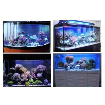 Best Quality Reef Tank 72'' LED Aquarium Light