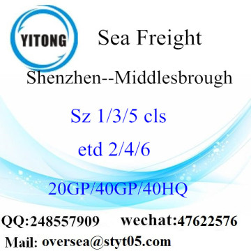Shenzhen Port Sea Freight Shipping To Middlesbrough