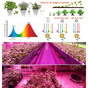 Veg / Bloom Hydroponic Systems LED Grow Light