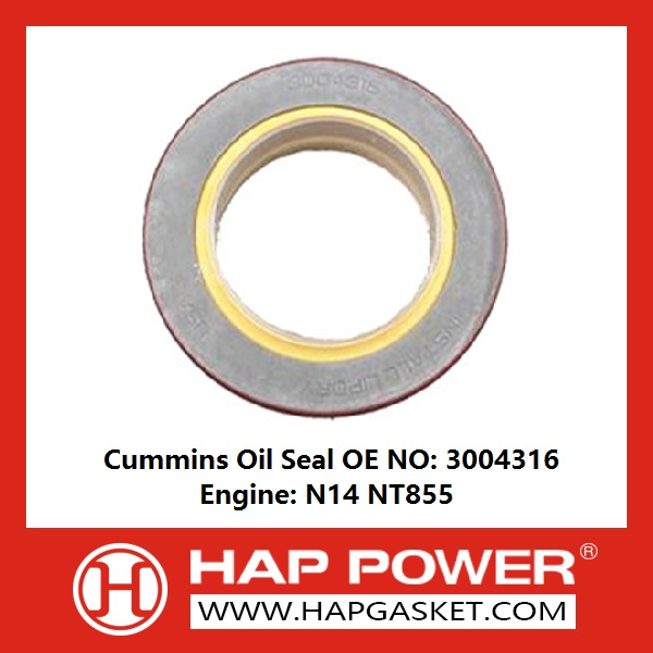 Industry Oil Seal 3004316