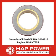 Fast Delivery for Oil Seal, Silicone Rubber Oil Seal, TC Oil Seal, Valve Stem Oil Seal Manufacturer in China Industry Oil Seal 3004316 supply to Turkmenistan Supplier