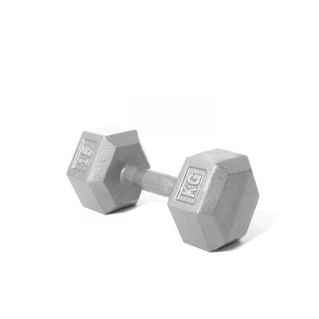 Competitive Price for Workout Cast Iron Dumbbell 15KG Cast Iron Hex Dumbbell export to Bulgaria Supplier