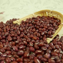 Small Red Bean factory supply