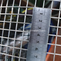 Big Width and Wire Galvanized Welded Wire Mesh