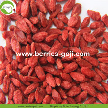 Super Grade Natural Fruit Premium Common Goji Berry