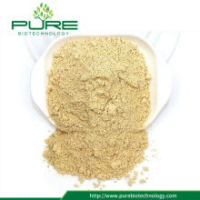High quality licorice root extract powder