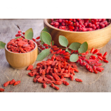 Certified organic chinese goji berry