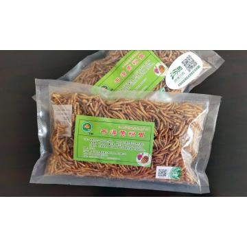 best parrot feed mealworm