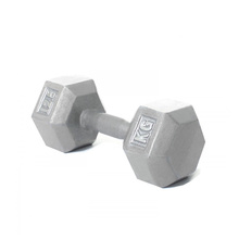 12.5KG Cast Iron Hex Dumbbell