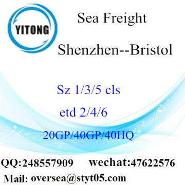 Shenzhen Port Sea Freight Shipping To Bristol