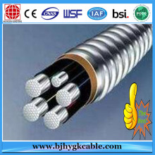 Aluminum Alloy Conductor XLPE Insulated Steel Wire Armoured Power Cable