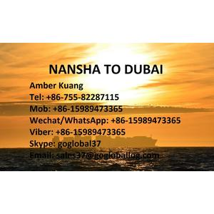 Guangzhou Nansha Sea Freight to United Arab Emirates Dubai