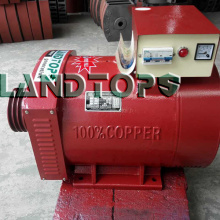 China Gold Supplier for Three Phase Alternator 30KW STC Three Phase High Power Alternator Price export to South Korea Factory