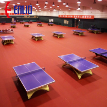 Table Tennis sports court floor