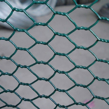Quality Plant Protection Hexagonal Wire Netting