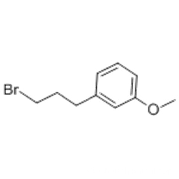 1-(3-BroMopropyl)-3-Methoxybenzene CAS 6943-97-1