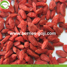 Lose Weight Dried Natural Healthy Tibet Goji